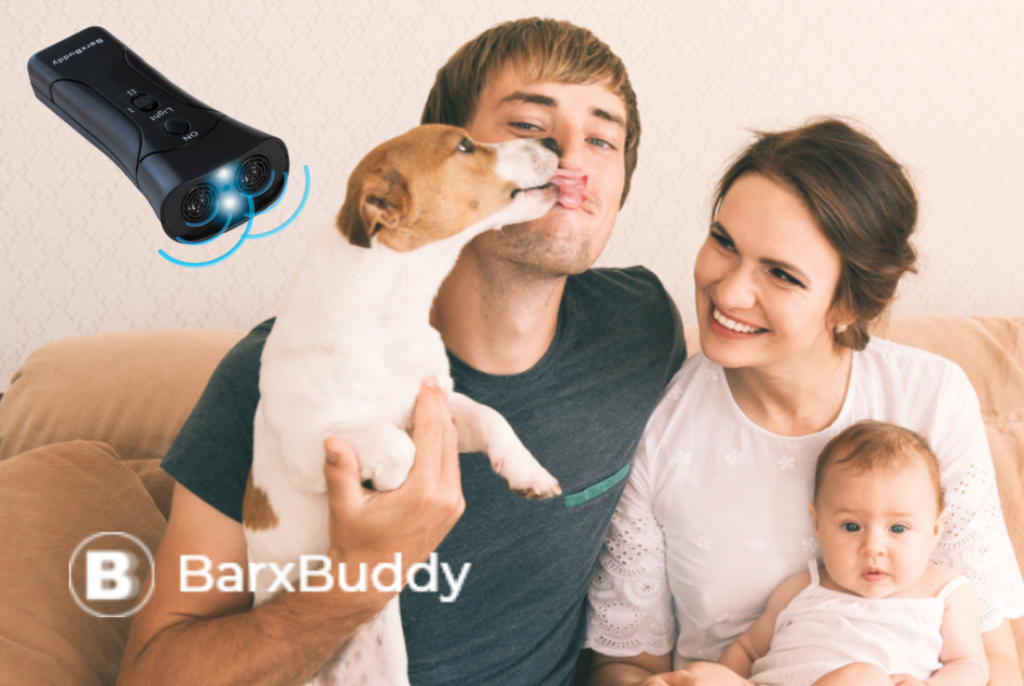 Dog Training With the BarxBuddy Dog Training Device